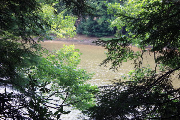 Wild Turkey Riverfront Cabins - View of River from the Fire Ring